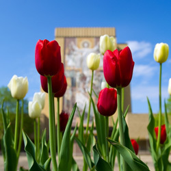 Hesburgh Library in the Spring