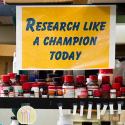 Research Like a Champion Today