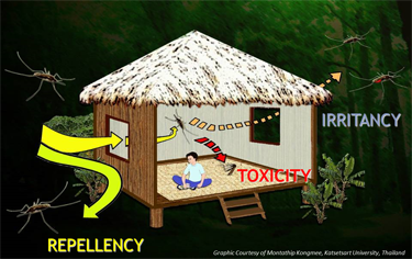 Spatial Repellency. Graphic courtesy of Montathip Kongmee, Katsetsart University, Thailand.