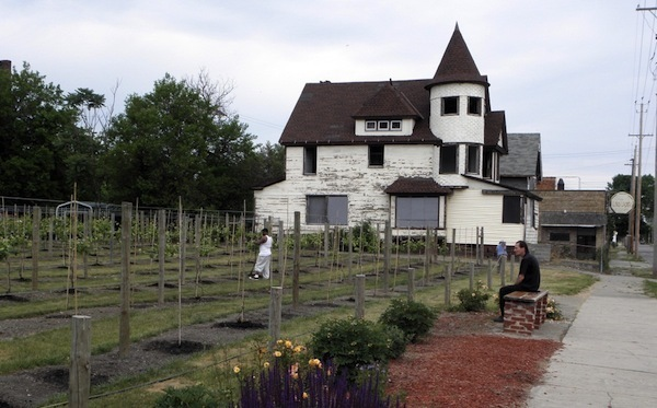 Vineyards of Chateau Hough in Cleveland, Ohio