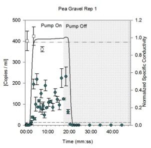qPCR Results from Pea Gravel