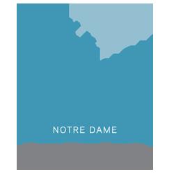 Precision Medicine logo