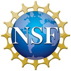 Nsf Logo 250