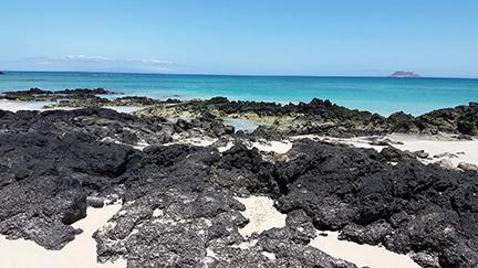 Galapagosisle2byelizabethwildenhain