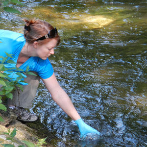 Researchers improve method to identify aquatic species using environmental DNA