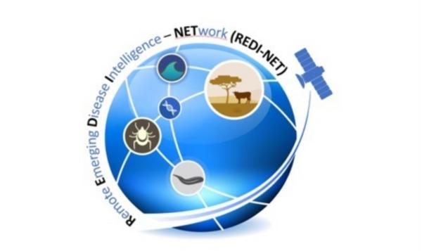 REDI-NET logo