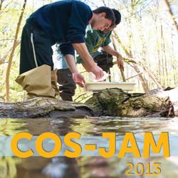 COS-JAM 2013